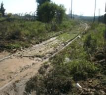 Αδιαφορία για ηλεκτροκίνηση στη δυτική Θεσσαλία