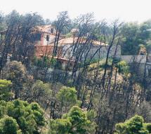 Νόμος – ευλογία για καταπατητές δασών