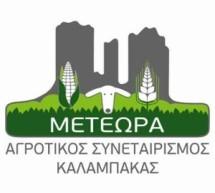 Συνέλευση για νέες δράσεις από τον «ΑΣ Μετέωρα»