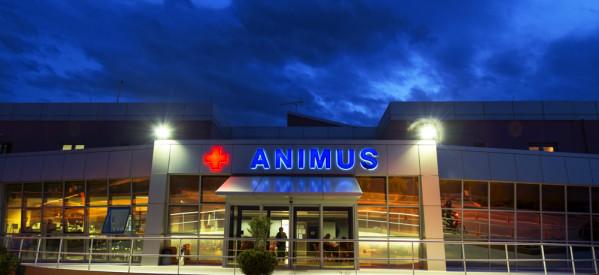 Στο ANIMUS στη Λάρισα η 16χρονη Μυρτώ