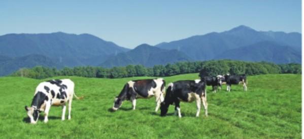 Υπογράφουν σύμβαση οι επιλεγέντες για τη βιολογική κτηνοτροφία