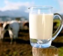 «Καίει» τους κτηνοτρόφους  η τιμή του αιγοπρόβειου γάλακτος
