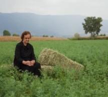 Κριτική του Αρη Μαλανδράκη στη νέα ταινία του Βασίλη Λουλέ