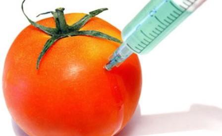 Παρέμβαση ΚΚΕ για την παραγωγή Γενετικά Τροποποιημένων Οργανισμών