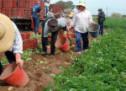 «Σφουγγάρι» Βορίδη σε αμαρτίες αγροτοσυνδικαλιστών