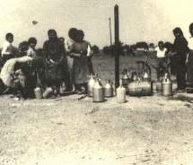 Συνέδριο Καραγκούνηδων στα Φάρσαλα