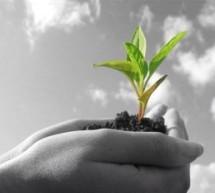 «Αγροτική ανάπτυξη σημαίνει στροφή στην ποιότητα»