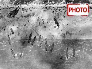 """Άγνωστες φωτογραφίες από την """"Απόβαση στη Νορμανδία"""""""