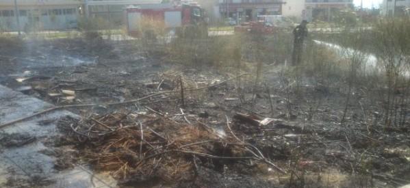 Ο Δήμος Τρικκαίων επιμένει για τον καθαρισμό οικοπέδων