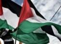Παναγιώτα Δριτσέλη: Viva Palestina