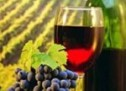 Όλα έτοιμα για το πρώτο Thessaly Wine Festival