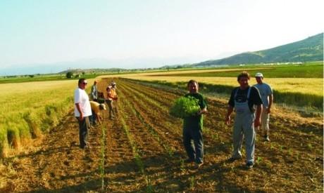 Οι εν δυνάμει νέοι αγρότες στο  ν. Τρικάλων
