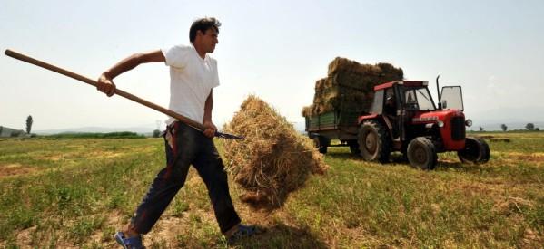 Οι δαπάνες για τους νέους αγρότες