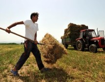 Δίνονται 150 εκατ. για τα γεωργοπεριβαλλοντικά του 2015
