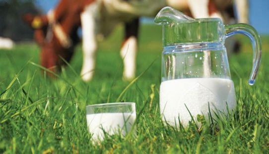 γάλα1-542x311