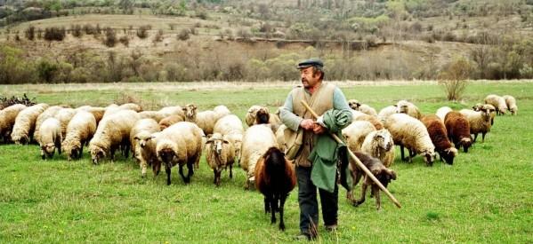 Πανθεσσαλική συνάντηση κτηνοτρόφων