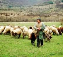 Eπίθεση της Ομοσπονδίας Κτηνοτρόφων στους 8 ευρωβουλευτές ΝΔ , ΠΟΤΑΜΙΟΥ και ΠΑΣΟΚ που ψήφισαν την CETA