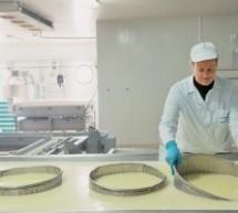 Πτώση 8% στον τζίρο της γαλακτοβιομηχανίας ΤΡΙΚΚΗ