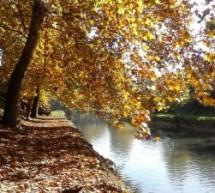 Tρίκαλα – Ημερίδα για τα ποτάμια