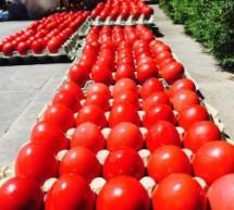 Κόκκινα αβγά για πολίτες ευπαθών ομάδων