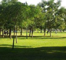 Δωρεάν άθληση στον Δήμο Τρικκαίων