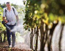 Η Ε.Ε. ζητά από τις Θεσσαλικές Ενώσεις Αγροτικών Συνεταιρισμών  24.250.000 ευρώ από τα δανεικά και αγύριστα του 2008