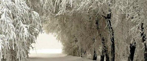 Image result for χιονισμενο πηλιο