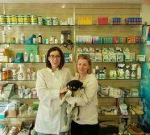 Όταν η «φωνή των ζώων» συνάντησε τη Μαρκέλα Χασιώτη και εθελοντές κτηνιάτρους απ΄όλη της Ελλάδα