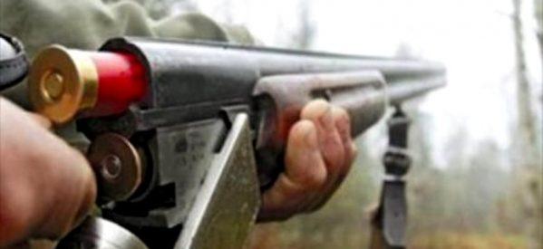 Τρίκαλα: 55χρονος σκότωσε ποιμενικό σκύλο μπροστά στα μάτια 11χρονου!
