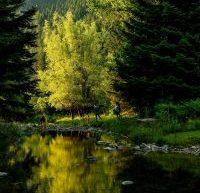 Η ομορφιά της Τρικαλινής φύσης