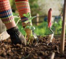 Στηρίξτε τους αγρότες για να μπορέσουν να καλλιεργήσουν γιατί θα πεινάσουμε