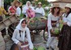 Παραδοσιακή πίτα 5 μέτρων παρασκευάσαν οι γυναίκες της Φαρκαδόνας [video]