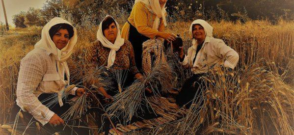 Η πολύ ωραία φωτογράφιση των Γυναικών του Συλλόγου Φαρκαδόνας και η γιορτή της χωριάτικης πίτας