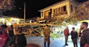 Κατέρρευσε πανύψηλος πλάτανος στην Πορταριά – Τραυματίστηκε νεαρή γυναίκα, σοβαρές ζημιές