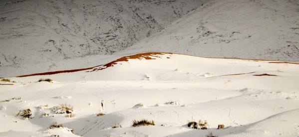 Το «έστρωσε» στη Σαχάρα – Χιονάνθρωποι στην «πύλη της Ερήμου» Άιν Σέφρα