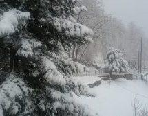 Χιόνια στα ορεινά του Νομού Τρικάλων