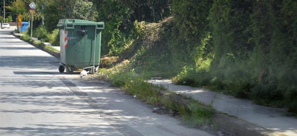 Βόλτα με καρότσι στα Τρίκαλα