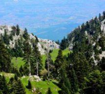 Kόζιακας – 78η Πανελλήνια Ορειβατική Συνάντηση 21-22 Ιουλίου