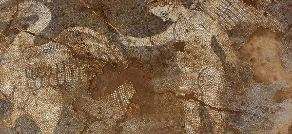 Εντυπωσιακό ψηφιδωτό στην Αρτα αποκάλυψε η αρχαιολογική σκαπάνη