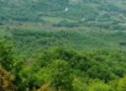 Χρηματοδοτείται με 4,6εκ.€ ο δρόμος Μουζάκι- Λίμνη Πλαστήρα