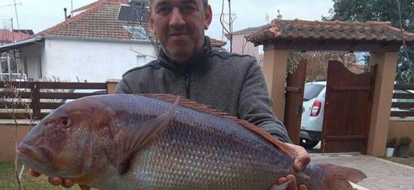 Δείτε τι «έπιασε» ο Τρικαλινός οδοντίατρος-ψαράς Κώστας Τσίγκας