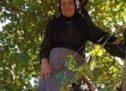 Η 84χρονη «σούπερ γιαγιά» που ανεβαίνει στα δέντρα