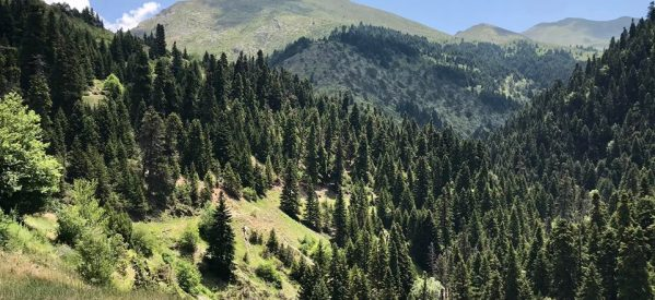 Τα άπαρτα βουνά ανήκουν  στους εξεγερμένους και όχι στους προσκυνημένους