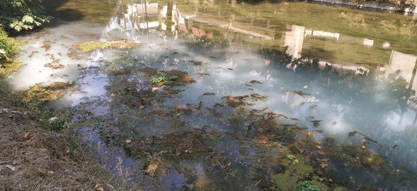 ΑΙΣΧΟΣ !!! Νέο οικολογικό έγκλημα στον Ληθαίο [εικόνες]