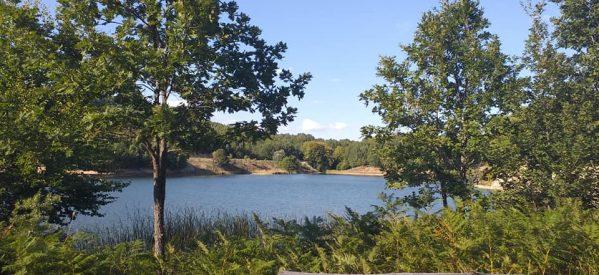 Η λίμνη Λογγά απέχει μόλις 50′ από τα Τρίκαλα και έχει εξελιχθεί σε σημαντικό οικοτουριστικό αξιοθέατο
