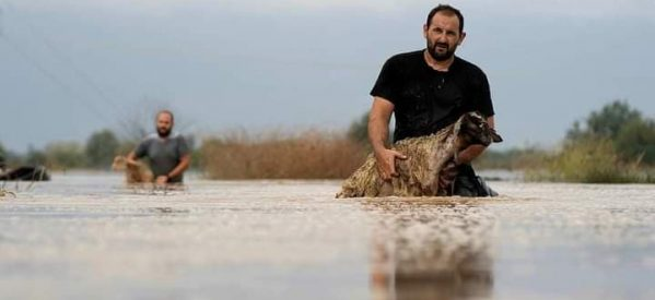 Πιστώνονται οι πρώτες προκαταβολές  στους αγρότες και κτηνοτρόφους της Θεσσαλίας που χτυπήθηκαν από τον Ιανό