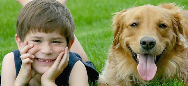 Ο Δήμος Μουζακίου ενημερώνει τους ιδιοκτήτες ζώων