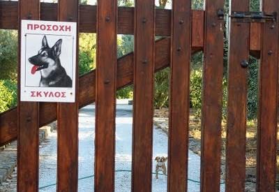 Του έκλεψαν και το σκυλί στη Φαρκαδόνα!