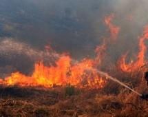 Κάηκαν 100 στρέμματα στο Κουτσόχερο
