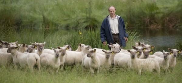 Στις ευρωεκλογές οι κτηνοτρόφοι!